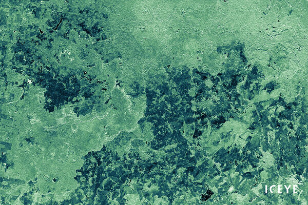Guatemala-Laguna Del Tigre National Park-ICEYE-SAR-Data