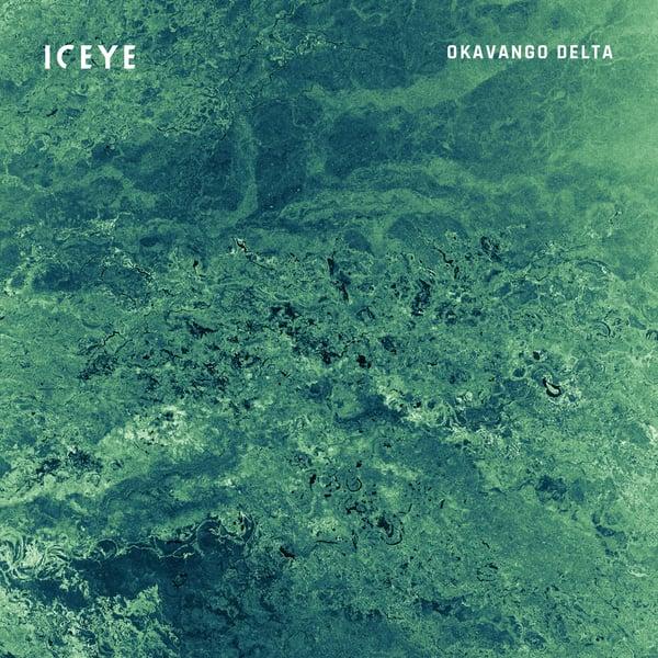 ICEYE_SAR_Satellite_Image_Okavango_Delta