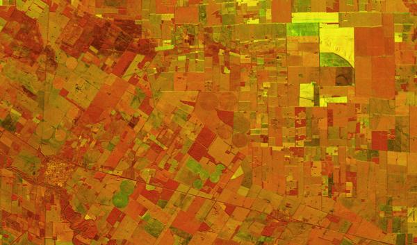 Field segmentation, Cordoba, Argentina, SAR image from ICEYE