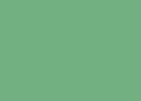 iceye-flood-subscription-icon_green