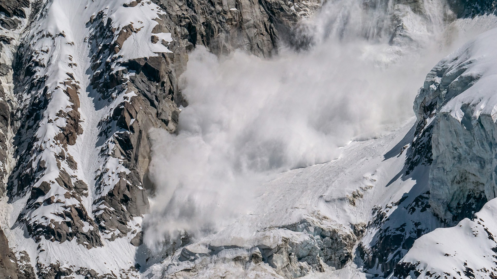 Solutions-Civil_Government-Avalanche