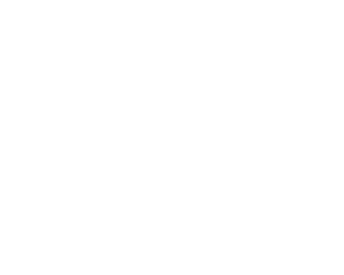 ICEYE Solutions Logo